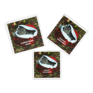Shorthair Cat in Red Stocking Christmas Tray Set