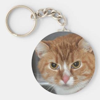 Shorthair Orange Tabby Cat Keychain