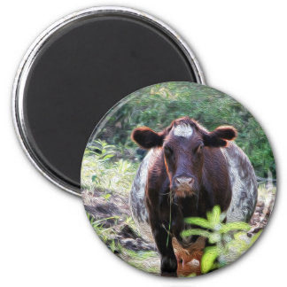 Shorthorn Dairy Cow Cooling in the Stream Magnet