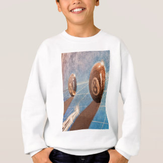 Shot of billiard balls illustration on the wall sweatshirt