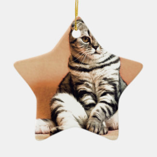 Shotlanskogo Fold Cat Kitten Pets British Cat Ceramic Ornament
