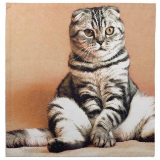 Shotlanskogo Fold Cat Kitten Pets British Cat Napkin