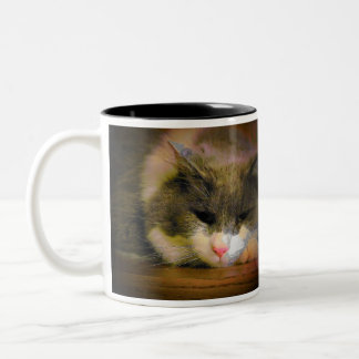 Should have stayed in bed Cat Meme Two-Tone Coffee Mug