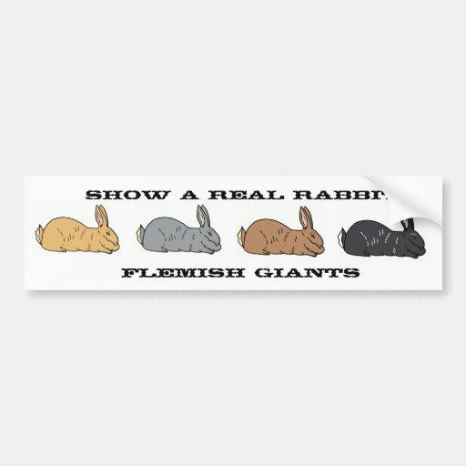 Show A Real Rabbit Flemish Giant Bumper Sticker