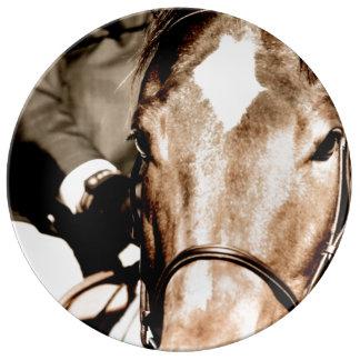 Show Horse Porcelain Plates