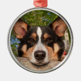 Show Me Sad Silver-Colored Round Ornament