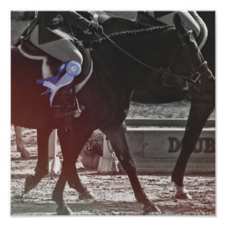 SHOW OFF RIBBONS 12 x 12 Print