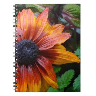 Showoff Notebooks
