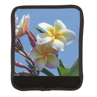 Showy Plumeria Frangipani Blooms Luggage Handle Wrap