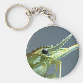 shrimp basic round button keychain