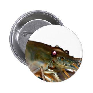 shrimp pinback buttons