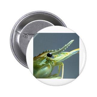 shrimp pins