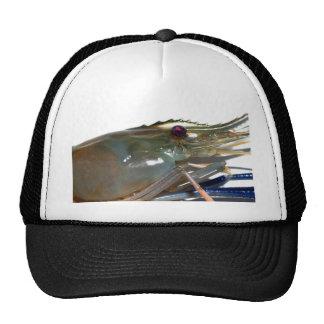 shrimp mesh hat