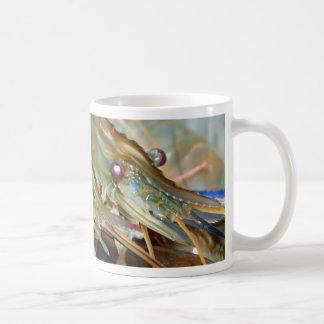 shrimp mug