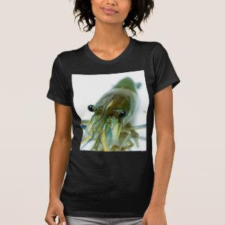 shrimp shirts