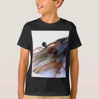 shrimp t shirts