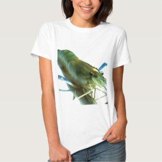 shrimp t-shirts