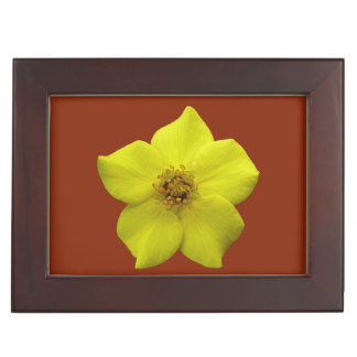 Shrubby Cinquefoil #1 Keepsake Box