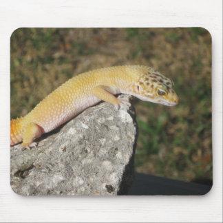SHTCT Leopard Gecko Mouse Pad