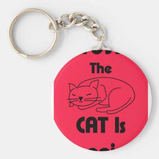 SHUSH! The Cat Is Sleeping Keychain