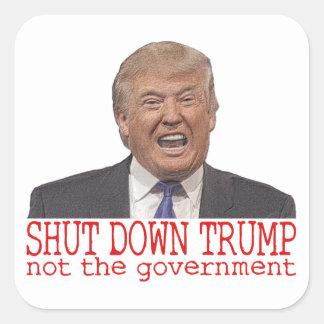 Shut down Trump, not the government Square Sticker