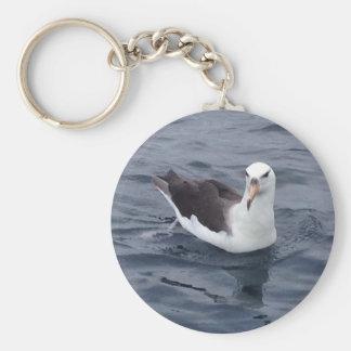 Shy Albatross Keychain