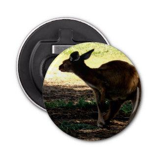 Shy Australian Kangaroo, Magnetic Bottle Opener. Bottle Opener