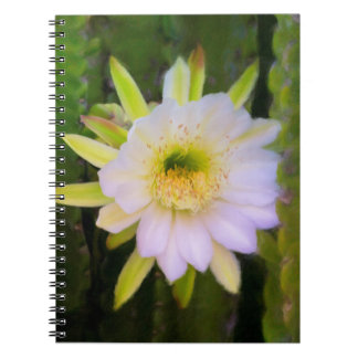 Shy Beauty Notebook