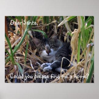 Shy Boy Cat Dear Santa Poster