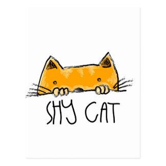 shy cat postcard