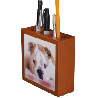 Shy English Bulldog Puppy Desk Organizer