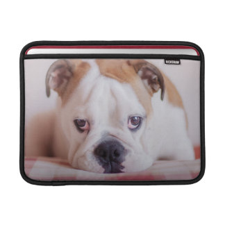 Shy English Bulldog Puppy MacBook Air Sleeves