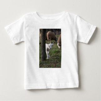 Shy lamb baby T-Shirt