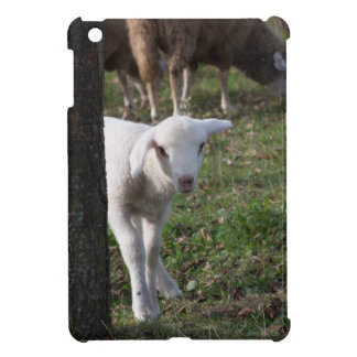 Shy lamb cover for the iPad mini