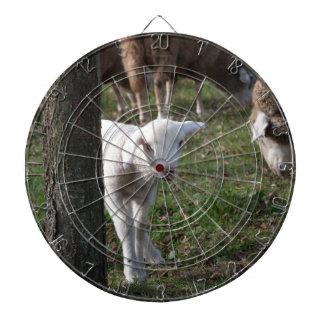 Shy lamb dartboard