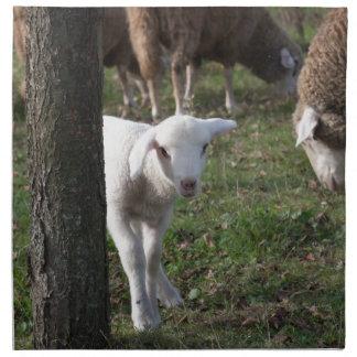 Shy lamb napkin