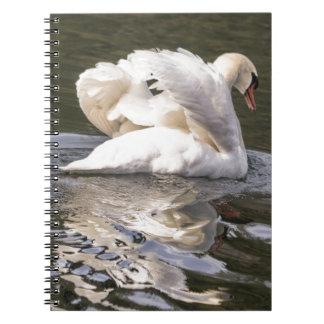 Shy Swan Notebook