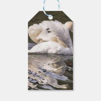 Shy Swan Pack Of Gift Tags