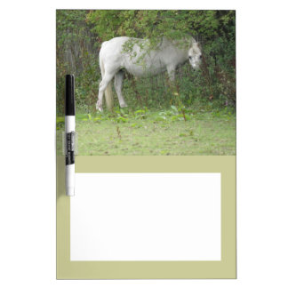 Shy White Horse Memo Board Dry-Erase Whiteboards