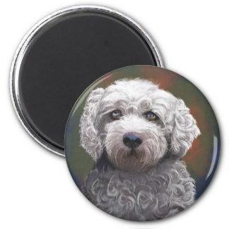 Shyanne Bichon Frise/ King Charles Cavalier 2 Inch Round Magnet