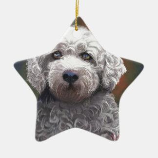 Shyanne Bichon Frise/ King Charles Cavalier Ceramic Star Ornament