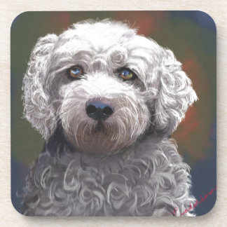 Shyanne Bichon Frise/ King Charles Cavalier Drink Coasters
