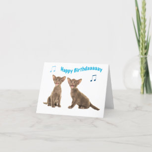 Siamese Baby Cats Singing Happy Birthday Card