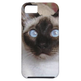 SIAMESE BEAUTY iPhone 5 COVER