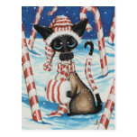 Siamese Candy Cane Kitty Postcards