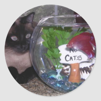 Siamese Cat and Fish Bowl Friends Round Sticker