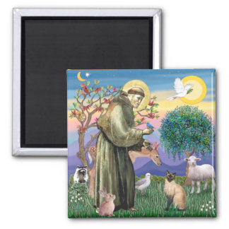 Siamese Cat and St Francis Square Magnet