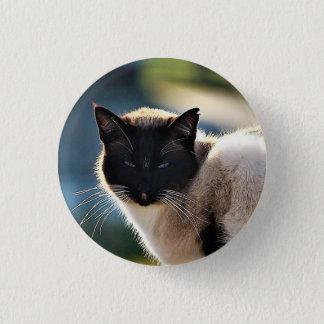 Siamese Cat Button