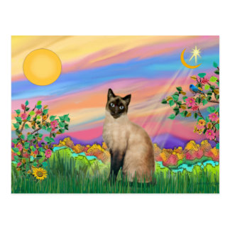 Siamese Cat - Day Star Postcard