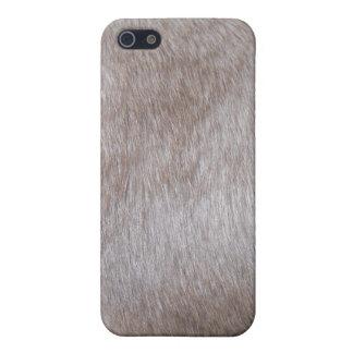 Siamese Cat Fur iPhone Cover iPhone 5/5S Cases